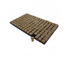 GRODAN sadbovací kostky 25x25x40mm v sadbovači po 150ks