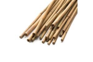 Bambusová tyčka 120cm, balení 25ks