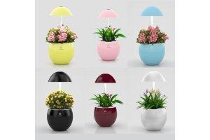 LED Home System-UrbanGreen I-Grow G301A,(white 3LED) - různé barvy