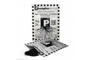 Phosphoderma, 3g